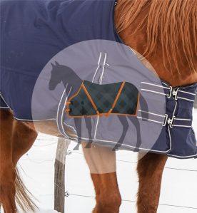 Horsewear